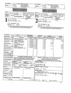 Exhibit A Tax-Bills Tax Record Cards Williamson County-illinois Il Property Tax Fraud 0536