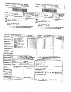 Exhibit A Tax-Bills Tax Record Cards Williamson County-illinois Il Property Tax Fraud 0544