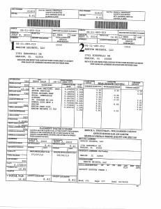 Exhibit A Tax-Bills Tax Record Cards Williamson County-illinois Il Property Tax Fraud 0552