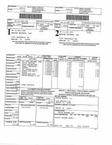 Exhibit A Tax-Bills Tax Record Cards Williamson County-illinois Il Property Tax Fraud 0584