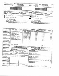 Exhibit A Tax-Bills Tax Record Cards Williamson County-illinois Il Property Tax Fraud 0595