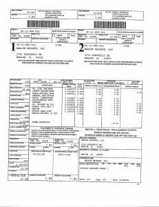 Exhibit A Tax-Bills Tax Record Cards Williamson County-illinois Il Property Tax Fraud 0634