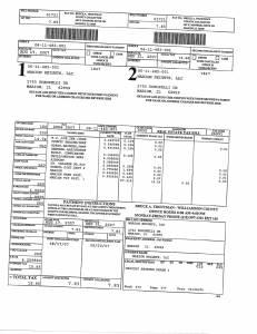 Exhibit A Tax-Bills Tax Record Cards Williamson County-illinois Il Property Tax Fraud 0694
