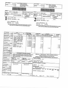 Exhibit A Tax-Bills Tax Record Cards Williamson County-illinois Il Property Tax Fraud 0696