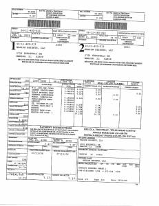Exhibit A Tax-Bills Tax Record Cards Williamson County-illinois Il Property Tax Fraud 0720